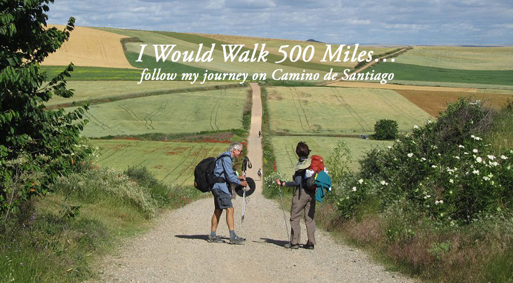 Follow my journey on Camino de Santiago.